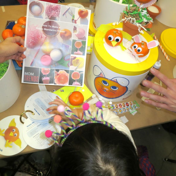 kids crafts, crafting with oranges, mandarin oranges, halo oranges