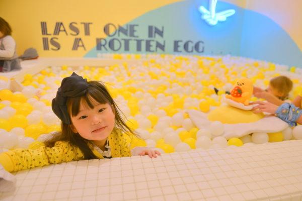 egg house, the egg house, yellow art, egg art