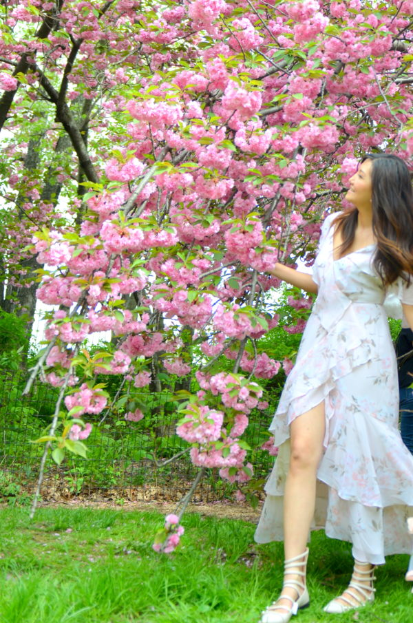 cherry blossom nyc, cherry blossoms in new york, floral dress, nordstrom dress, floral dresses under 150