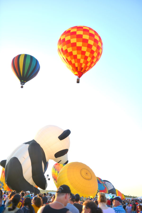 panda balloon, quickcheck balloon festival, hot air balloons nj
