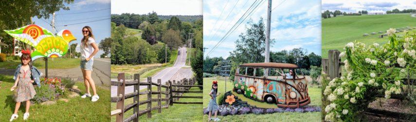 bethel woods, woodstock, road trips in NY, woodstock museum